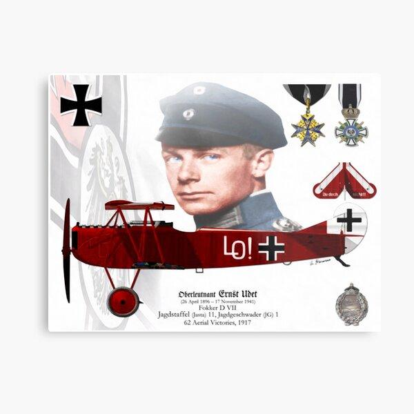 Oberleutnant Ernst Udet Metal Print