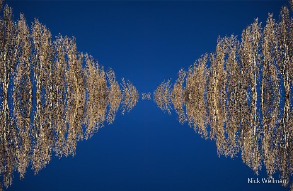 poplar reflection by wellman