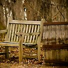 Resting Place Along The Way - Riverbanks Zoo by Randall Faulkner