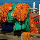 Fishing Nets by Joe Mortelliti