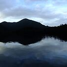 Gordon River reflection by medley