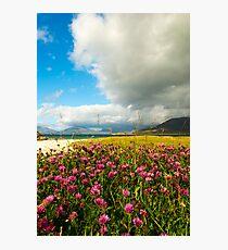 Machair on Isle of Harris Photographic Print