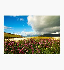 Flower before the Storm Photographic Print