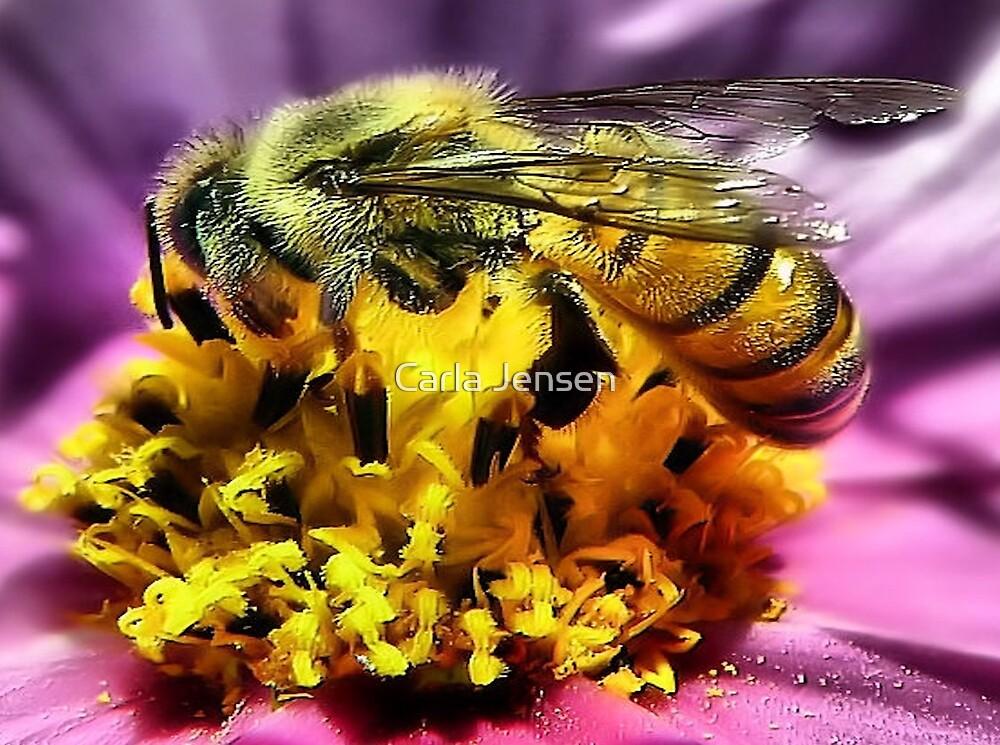 Bee~utiful by Carla Jensen
