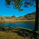 Blea Tarn by John Hare