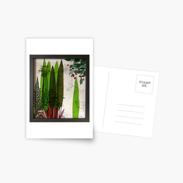 Doreanthes and Syzygium Postcard