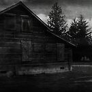 Ghostly Cabin by Terrie Taylor
