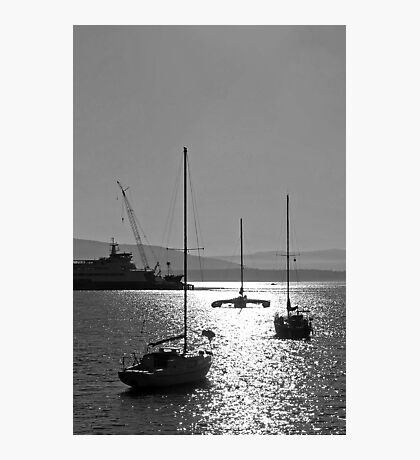 sailboat silhouettes in the sunline Photographic Print