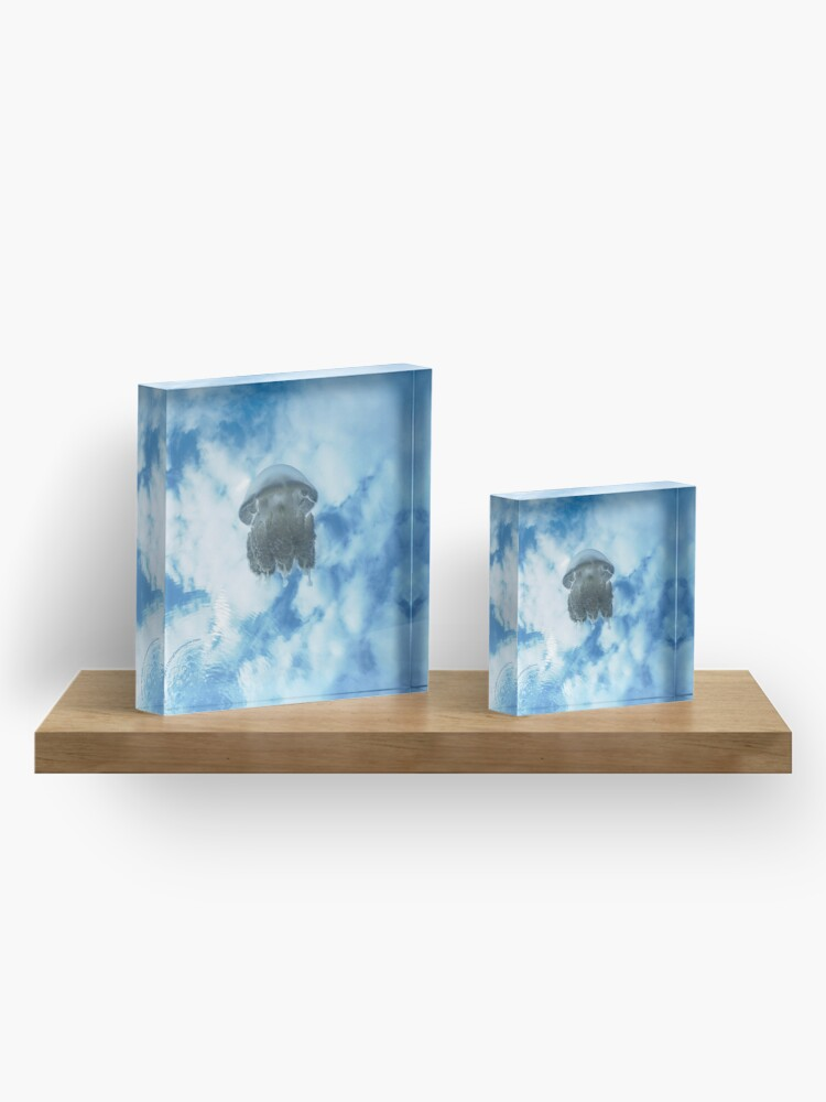 Alternate view of Jelly in Jellyfish Lake, Palau Acrylic Block