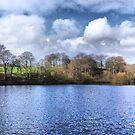 Chellow Dene ~ Panoramic HDR ~ by Sandra Cockayne