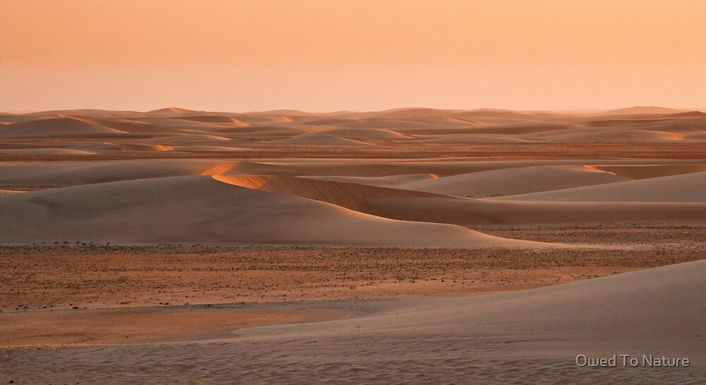 Last rays of sand by Owed To Nature