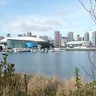 DOWNTOWN VANCOUVER CANADA 2010 by DIANEPEAREN