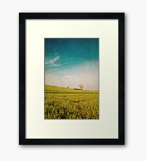 Meadow and Sky Framed Print
