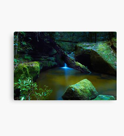 The Pond - Terrace Falls Canvas Print