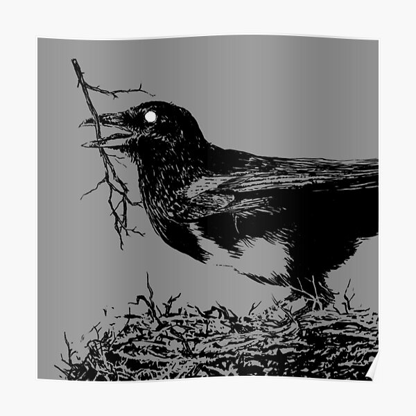 Magpie Poster