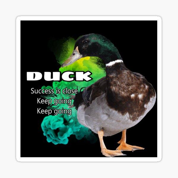 Duck symbolism Sticker
