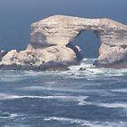 "Natural Monument ""La Portada"", Antofagasta - Chile by andreuch"