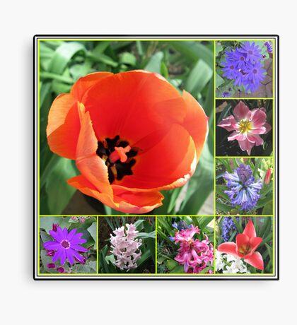 Tulips and Hyacinths Collage Metallbild