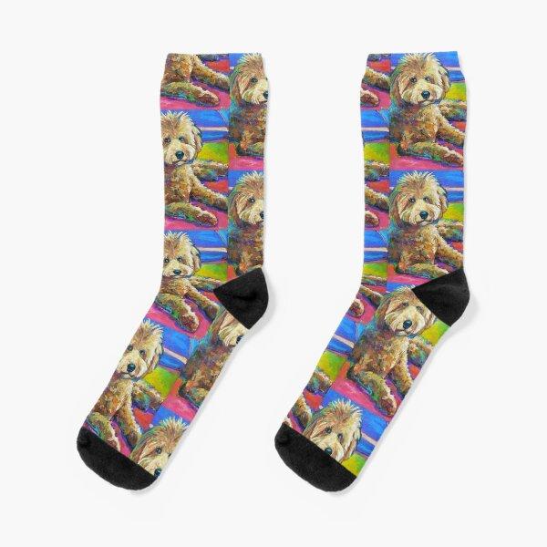 Gracie the LABRADOODLE Socks