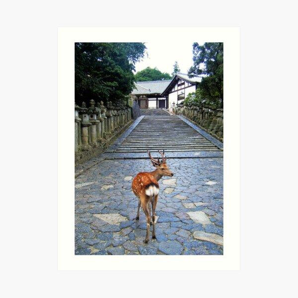 Nara 1 Art Print