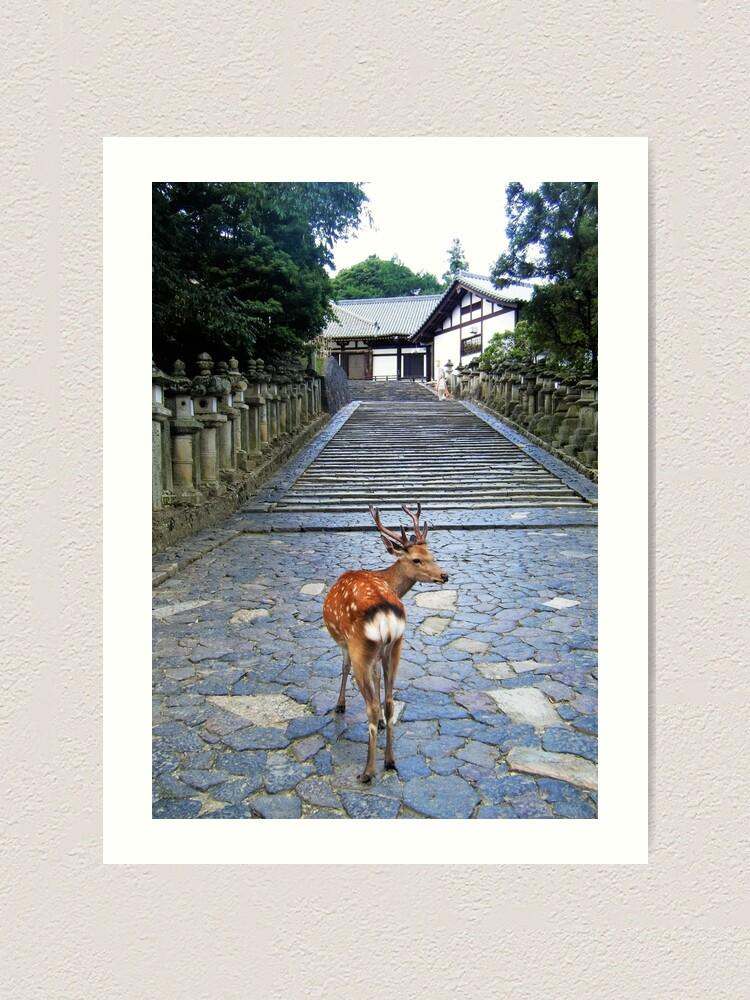 Alternate view of Nara 1 Art Print