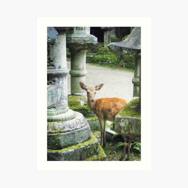 Nara 2 Art Print