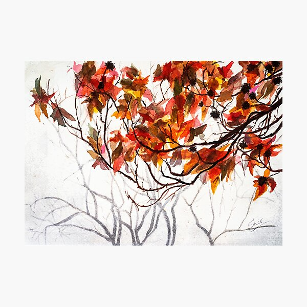 Fall Leaves - Watercolor Art Photographic Print