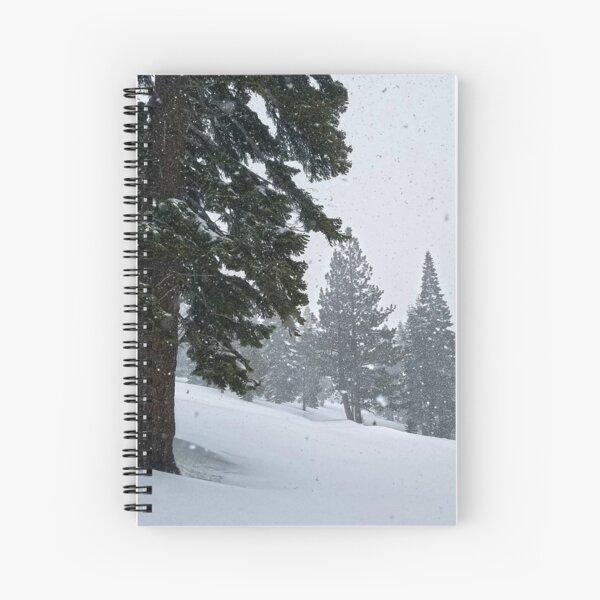 Snowstorm and Forest Spiral Notebook