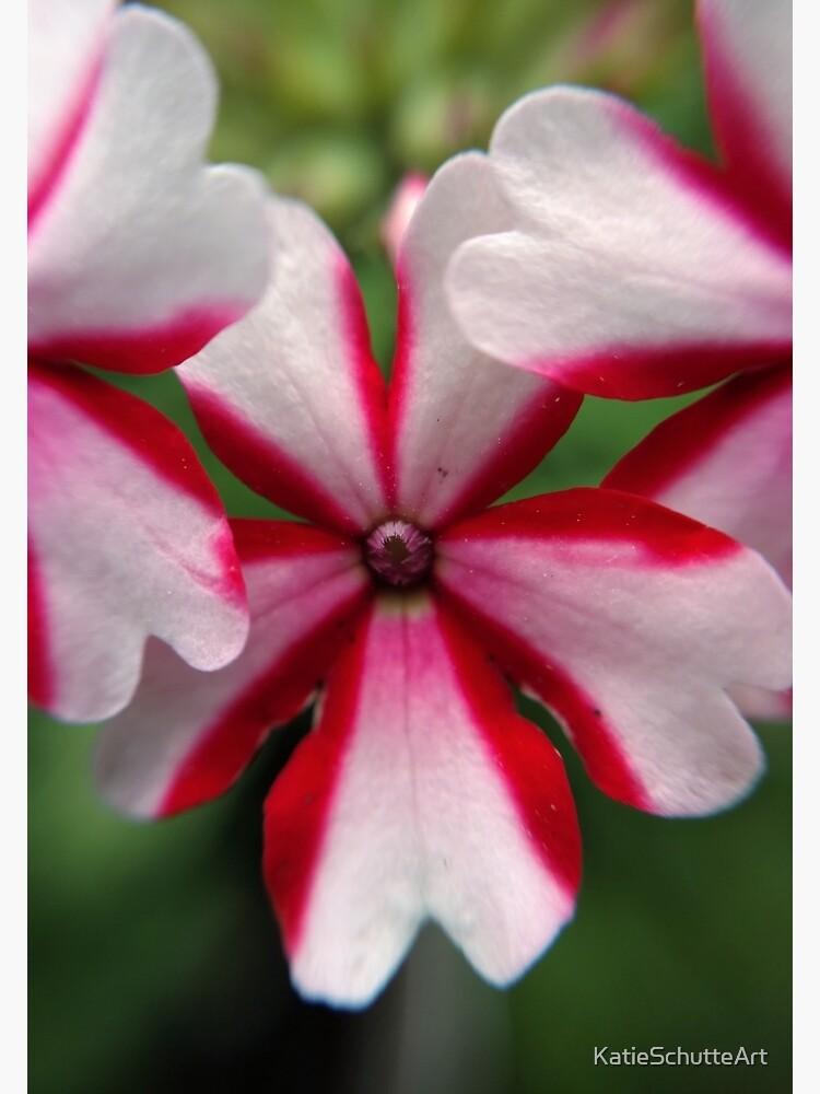 Pink Stripes by KatieSchutteArt