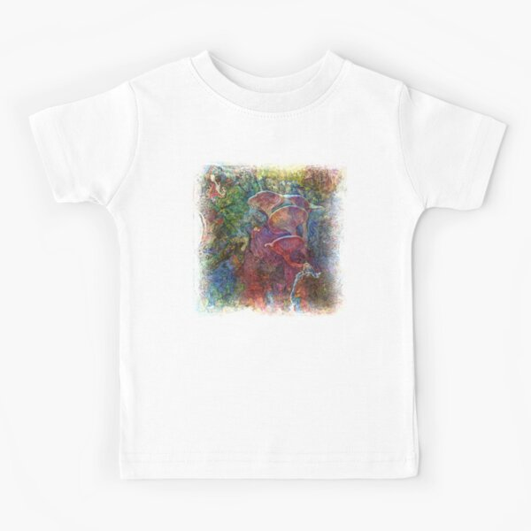The Atlas Of Dreams - Color Plate 61 Kids T-Shirt