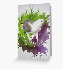 Royalty - White-bellied Sea Eagle Greeting Card