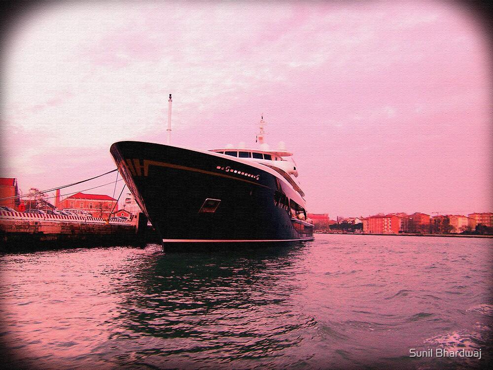Cruise by Sunil Bhardwaj