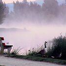 Misty Moisty Morn ! by Barbara Caffell