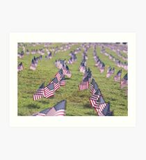 American Flag Array Art Print