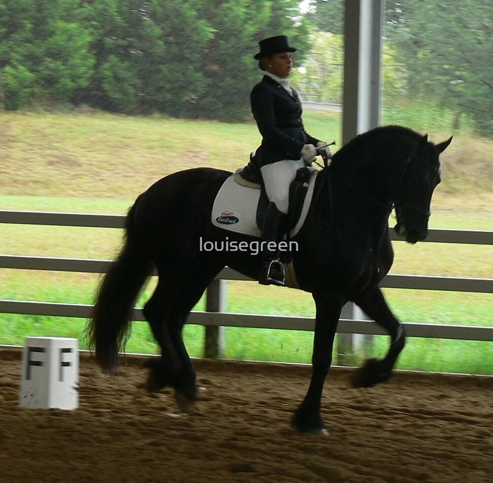 Jacana TK - Friesian Stallion by louisegreen