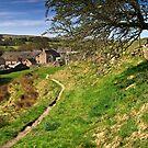 Rural Hurstwood  by Shaun Whiteman