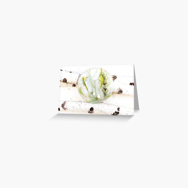 Le Medaillon de Glace. Carte de vœux