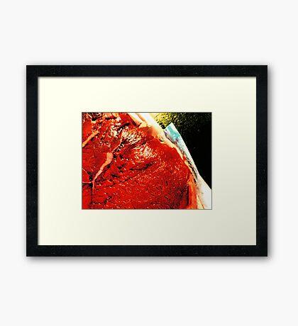 04-10-11:  Naked Lunch Framed Print