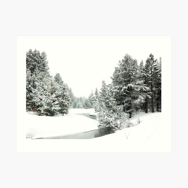 Upper Truckee River Surrounded by Snow Art Print