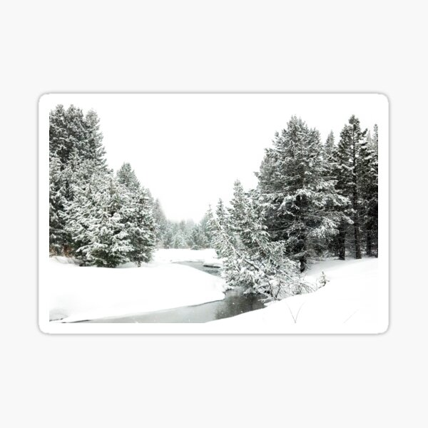 Upper Truckee River Surrounded by Snow Sticker