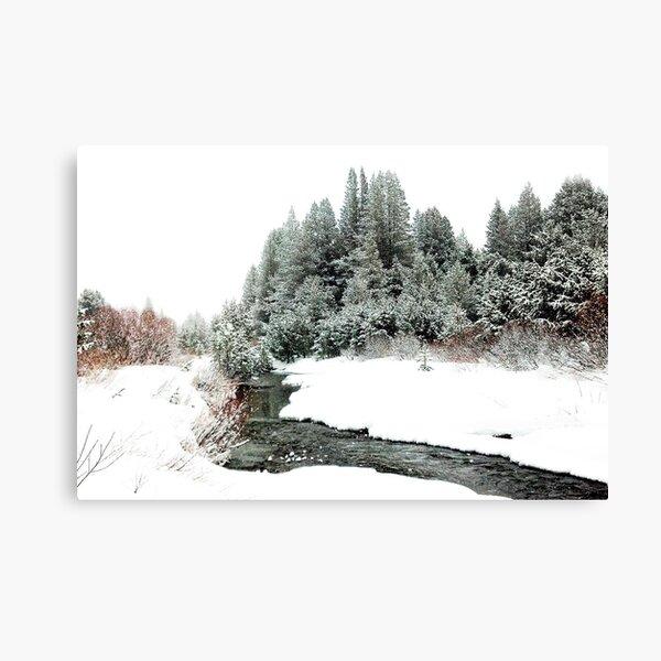 Snowy Upper Truckee River Canvas Print