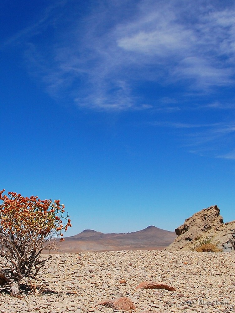 Nevada Desert by JaredManninen