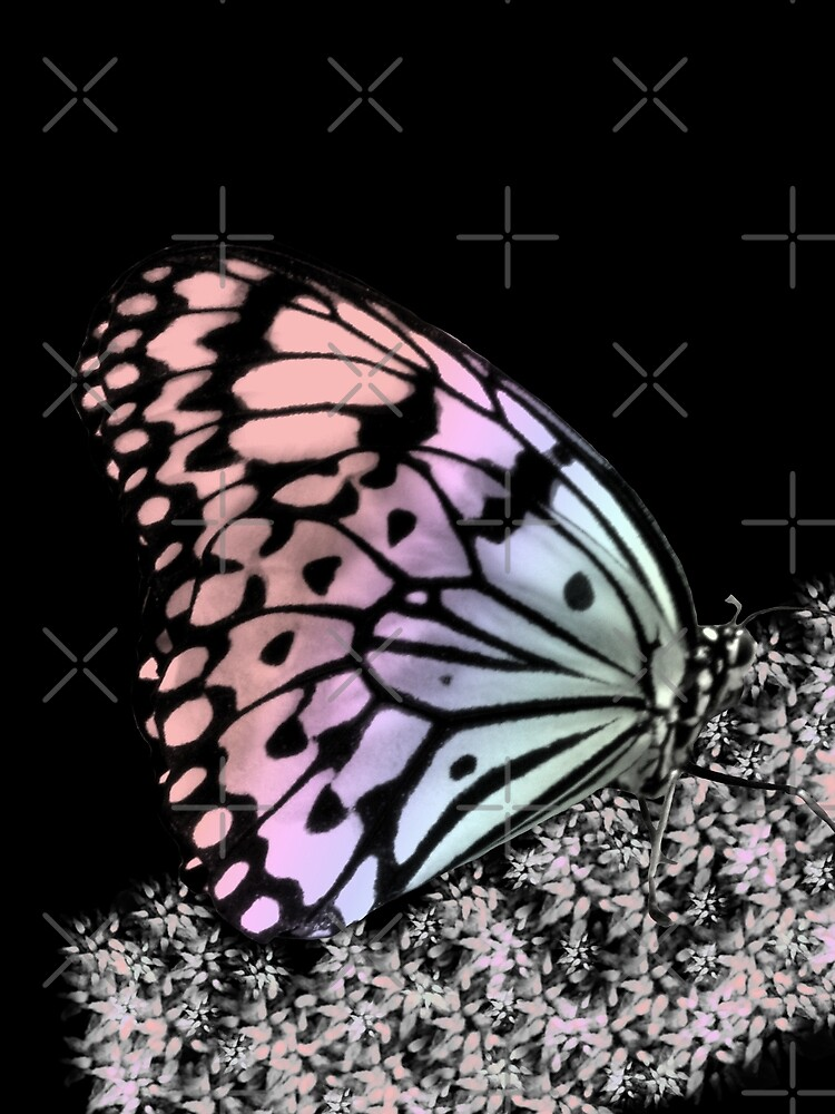 bunter Schmetterling, Insekt, Natur von rhnaturestyles