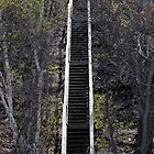 Steps to Heaven by eleanor p.  labrozzi