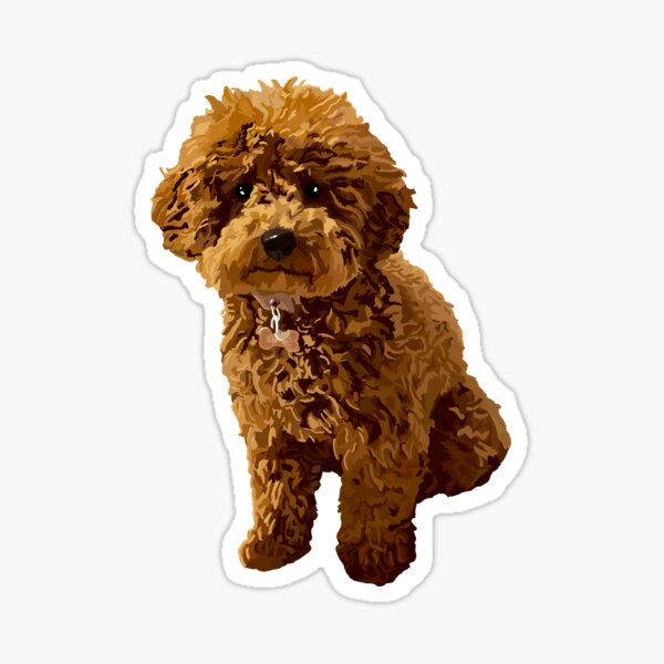 Ginger the Toy Poodle in Beige Sticker
