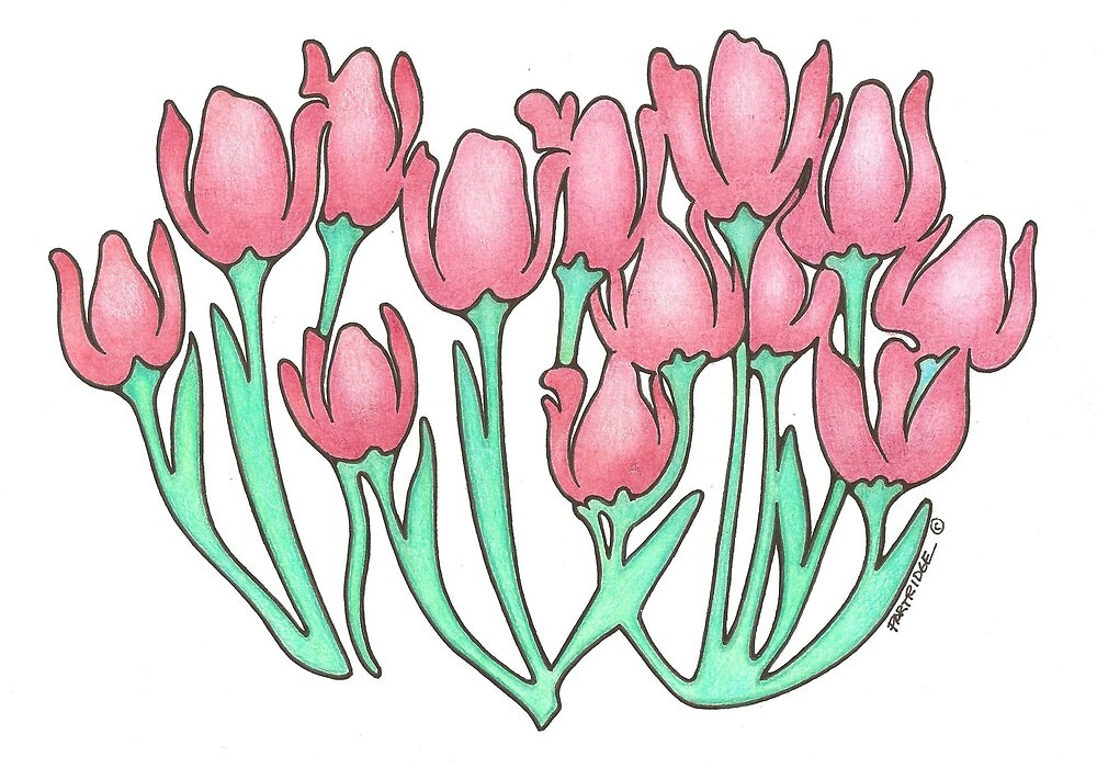 Tulips by Grumpology