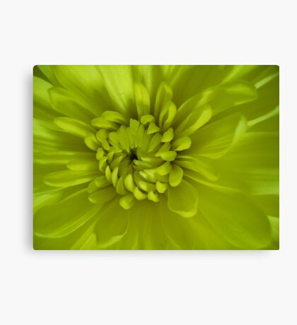 A Mum I Think Canvas Print