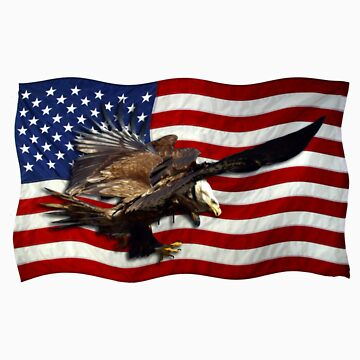 US FLAG & Bald Eagles Patriotic Design by NaturePrints