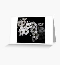 I Blossom Greeting Card