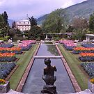 Villa Taranto, Pallanza, Lake Maggiore, Italy. by johnrf